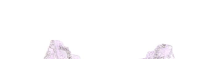 千娇子·奢华刺绣调整内衣8件组图片